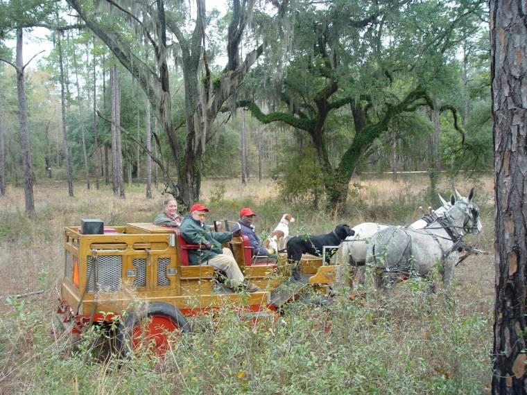 Quail Wagons