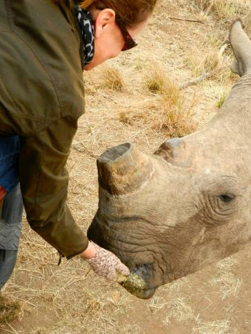 Kathleen feeding Rhino South Africa