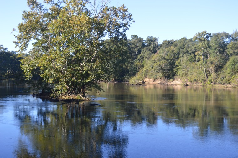 View of the Flint River from Rio Piedra Plantation | The Flint River stretches from the Piedmont to the Chattahoochee River in southwest Georgia.