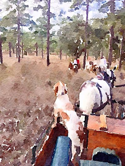 Groundhog sees shadow, predicts six more weeks of winter which means a few more bonfires, bundled up trail rides, and end of season quail hunts. KevinsCatalog.com #KevinsCatalog #waterlogue #quailhunt #trailride  | Tailored for the Sporting Lifestyle |